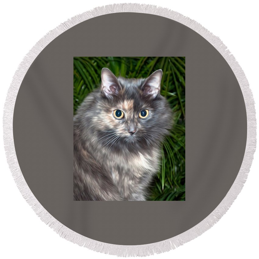 Cat Round Beach Towel featuring the photograph Tropical Kitty by Photos By Cassandra