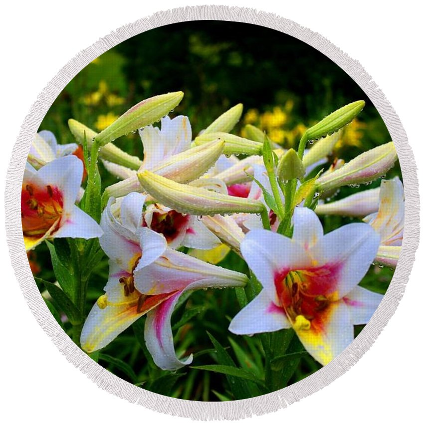 Lily Round Beach Towel featuring the photograph Trumpet Lilies by Kathryn Meyer