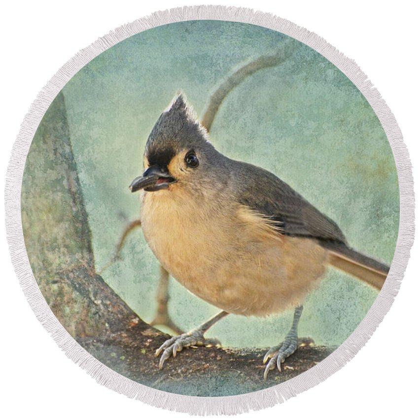 Animals Round Beach Towel featuring the photograph Tufted Titmouse IIi by Debbie Portwood