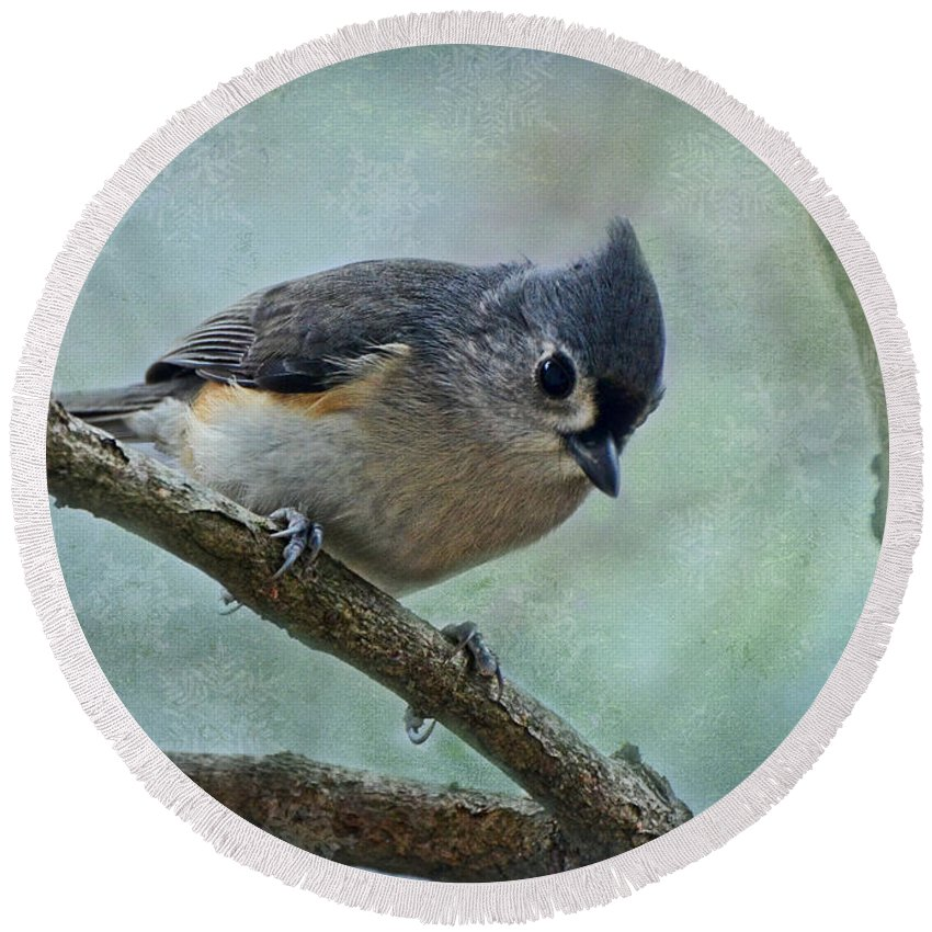 Nature Round Beach Towel featuring the photograph Tufted Titmouse With Snowflake Decorations by Debbie Portwood