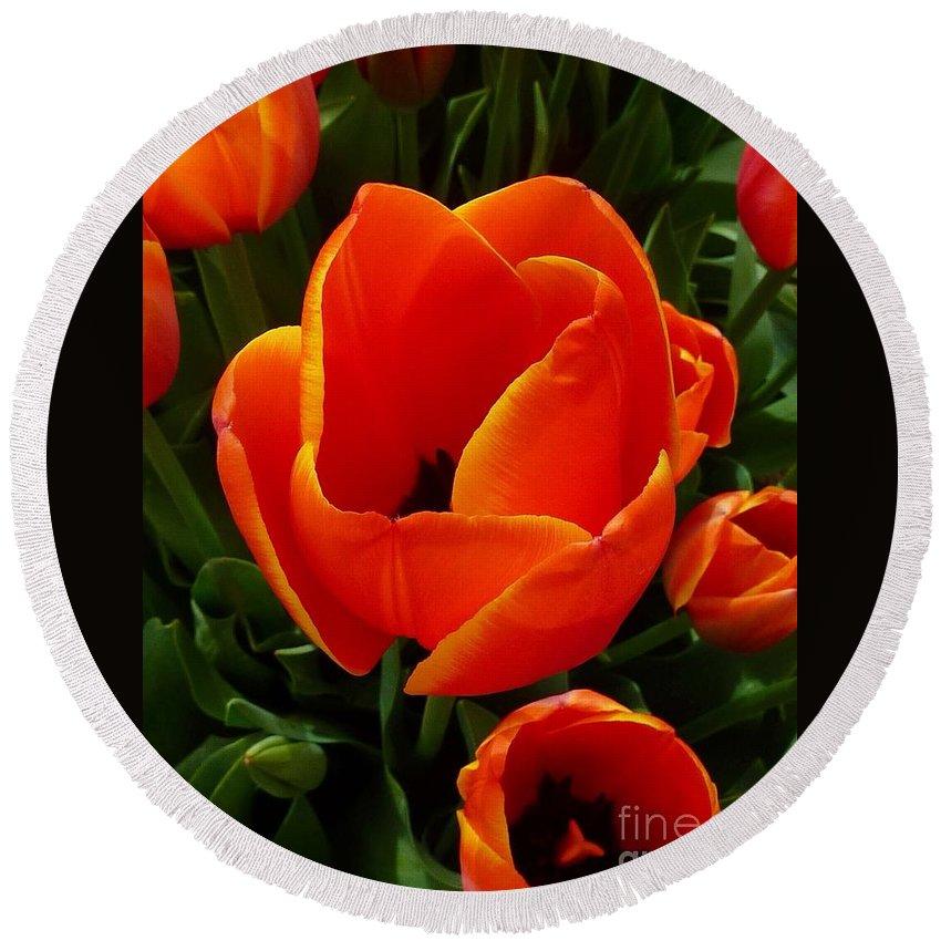 Tulip Orange Flower Round Beach Towel featuring the photograph Tulip Orange Flower by Susan Garren