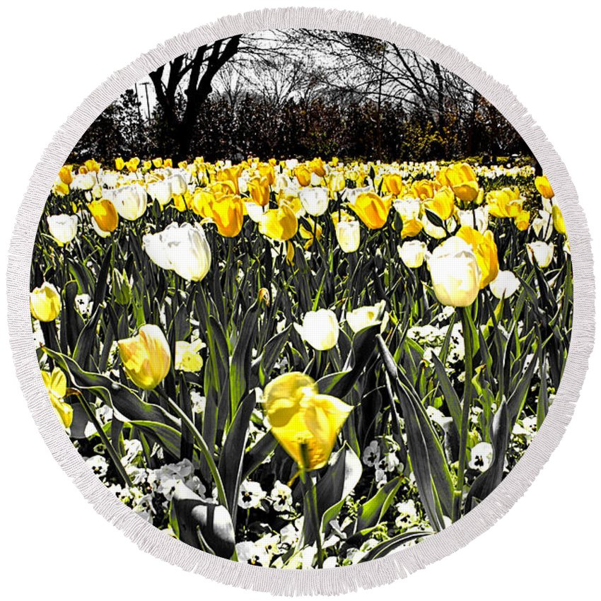 Tulips Round Beach Towel featuring the photograph Tulips At Dallas Arboretum V26 by Douglas Barnard