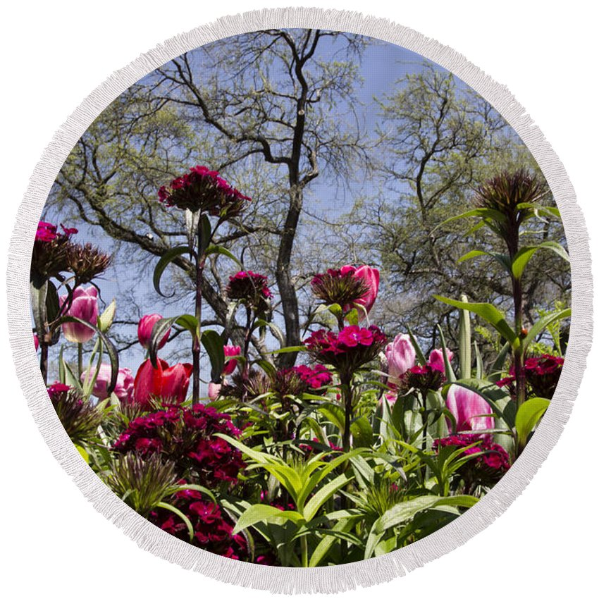 Tulips Round Beach Towel featuring the photograph Tulips At Dallas Arboretum V35 by Douglas Barnard
