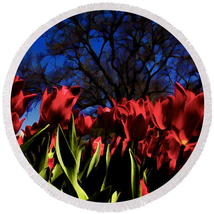 Tulips Round Beach Towel featuring the photograph Tulips At Dallas Arboretum V63 by Douglas Barnard
