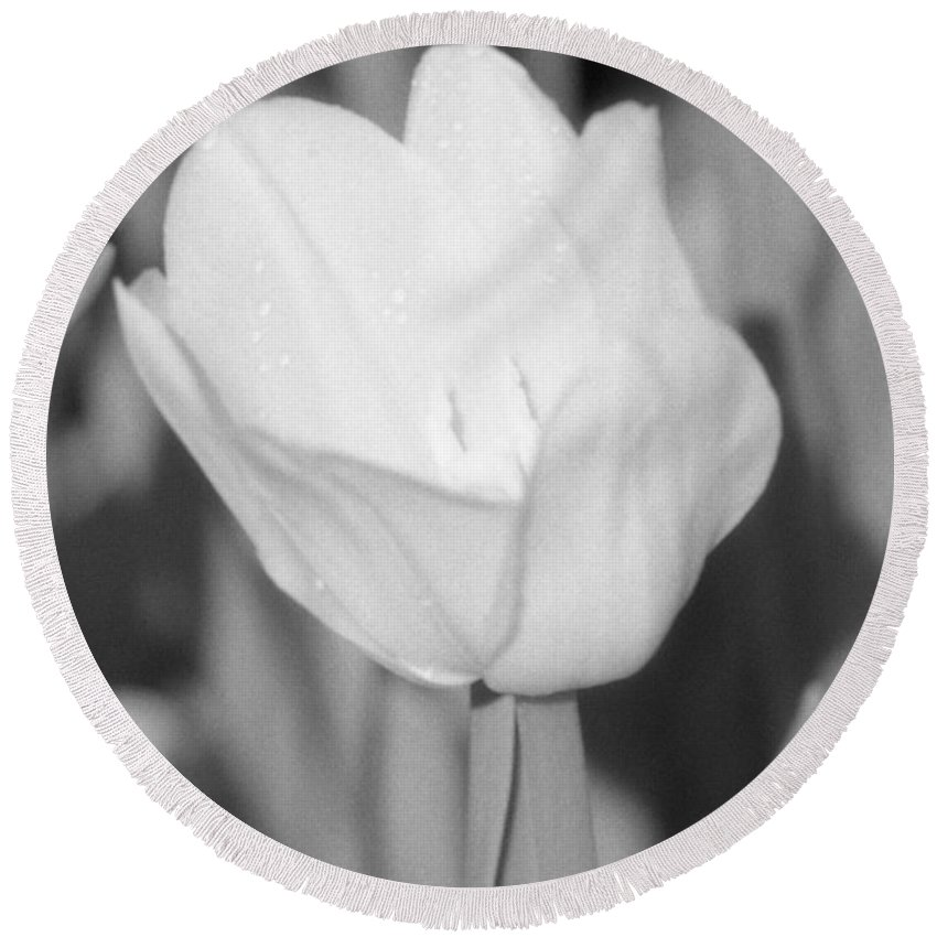 Tulip Round Beach Towel featuring the photograph Tulips - Infrared 15 by Pamela Critchlow