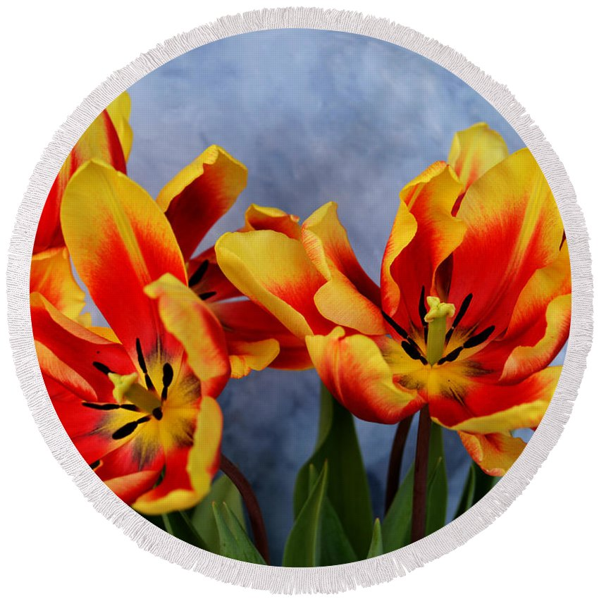 Tulip Round Beach Towel featuring the mixed media Tulips Radiance by To-Tam Gerwe