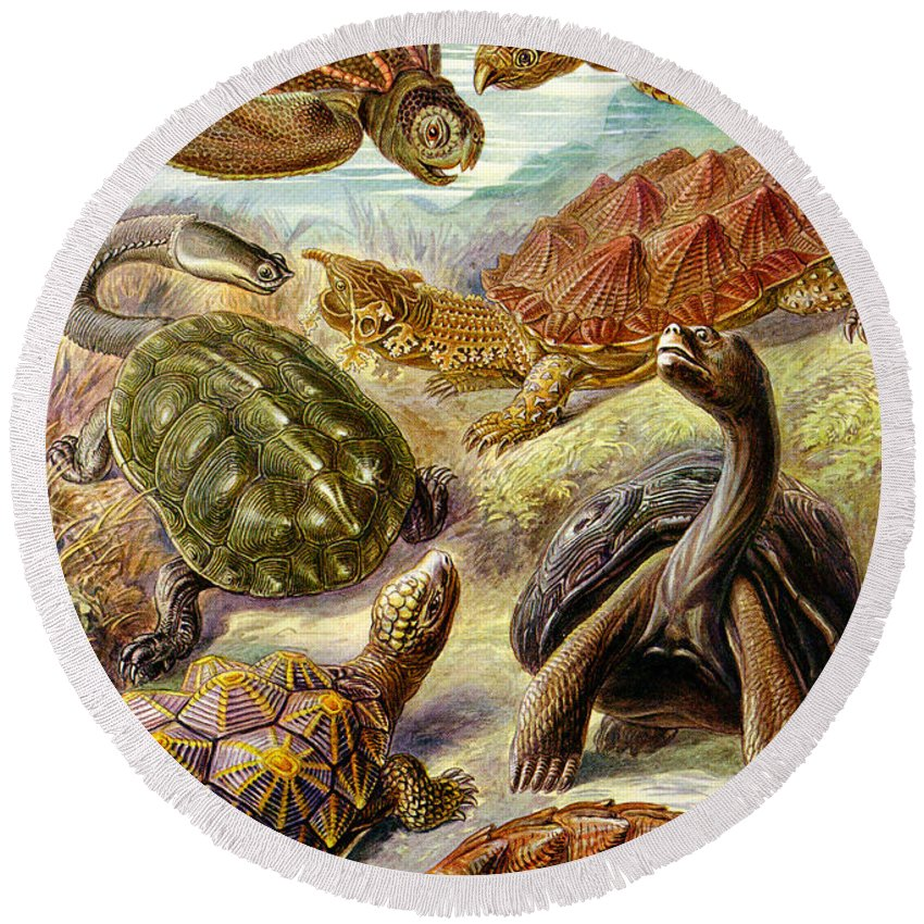 Turtles Turtles And More Turtles Round Beach Towel featuring the digital art Turtles Turtles And More Turtles by Unknown