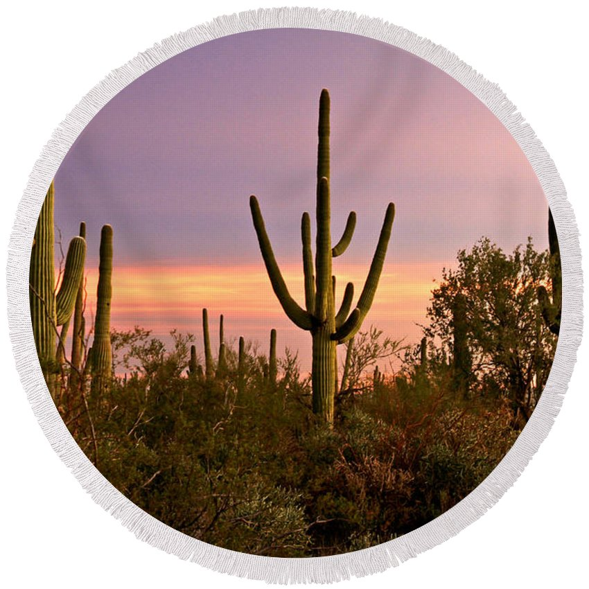Arizona Round Beach Towel featuring the photograph Twilight After Sunset In The Cactus Forests Of Saguaro National Park by Ed Riche