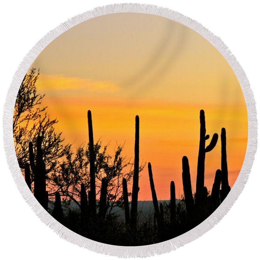 Arizona Round Beach Towel featuring the photograph Twilight After Sunset Sonoran Desert by Ed Riche
