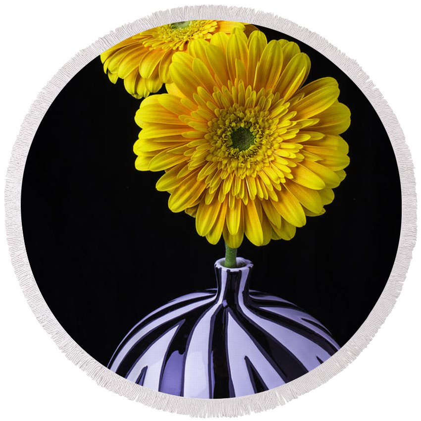 Two Round Beach Towel featuring the photograph Two Daises In Striped Vase by Garry Gay