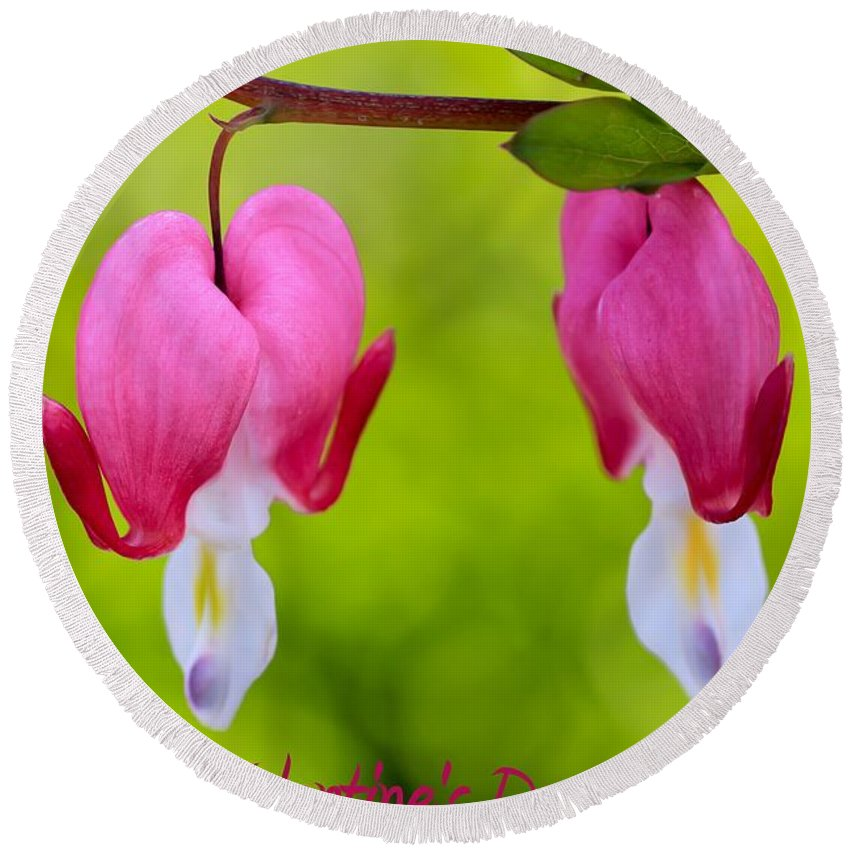 Beautiful Round Beach Towel featuring the photograph Two Hearts Valentine's Day by Heidi Smith