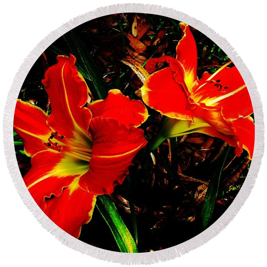 Red Round Beach Towel featuring the photograph Two Lilies by Lizi Beard-Ward
