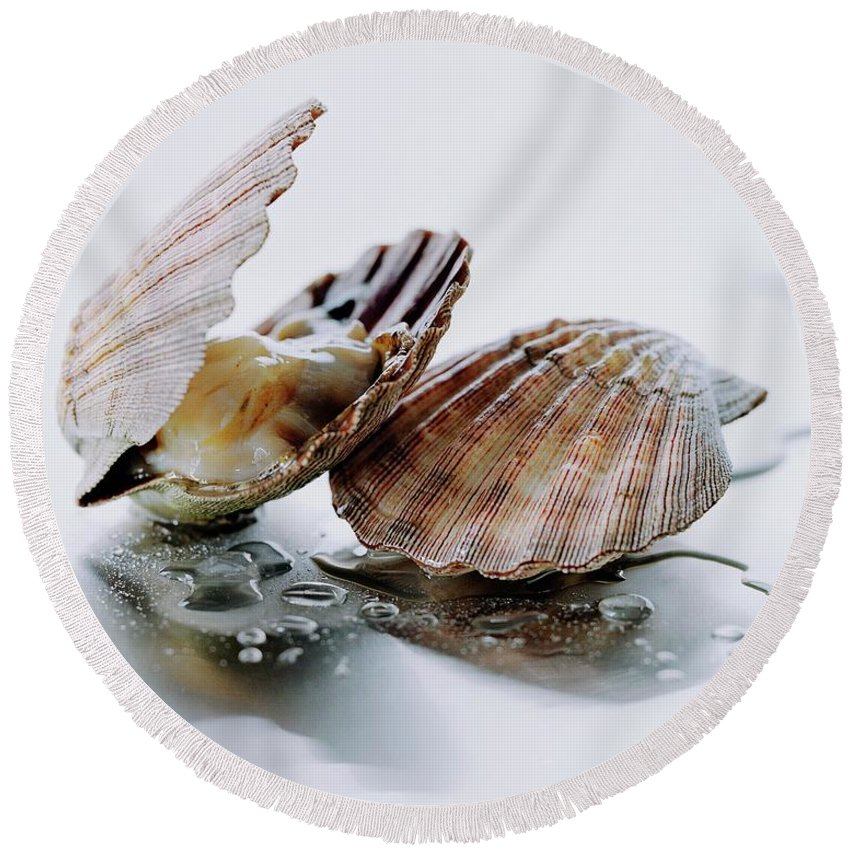 Cooking Round Beach Towel featuring the photograph Two Scallops by Romulo Yanes