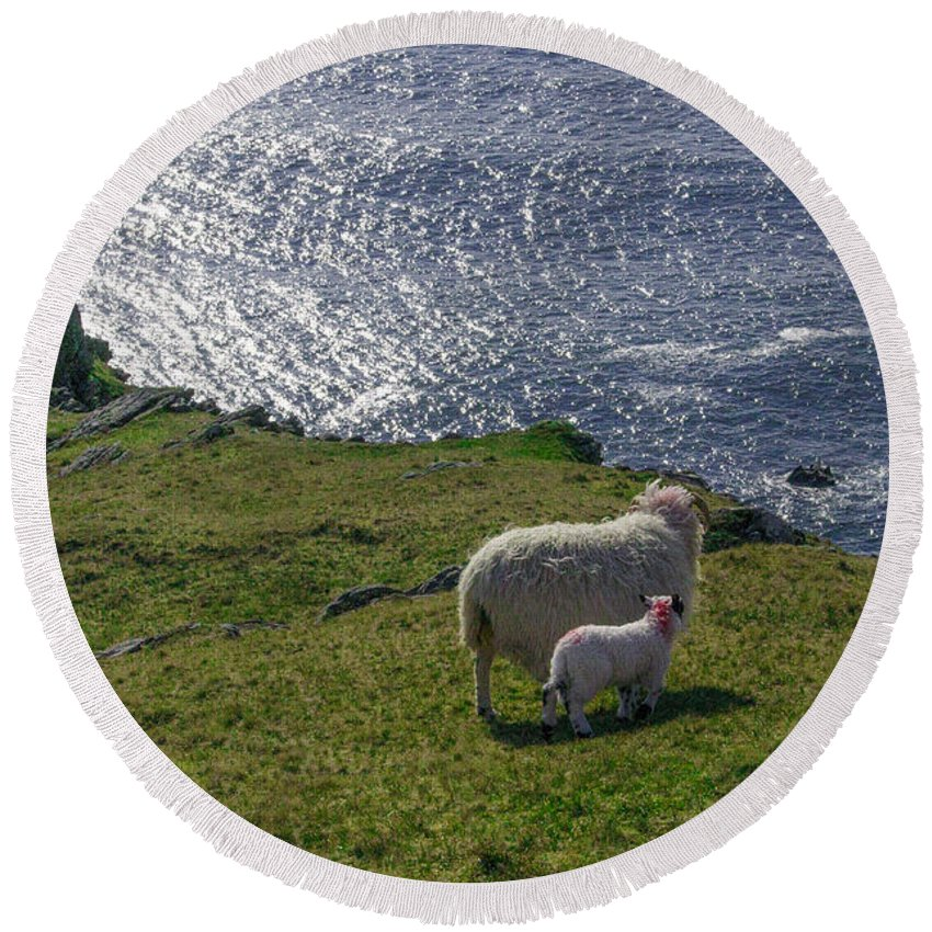 Two Round Beach Towel featuring the photograph Two Sheep On The Cliffs At Sleive League - Donegal Ireland by Bill Cannon