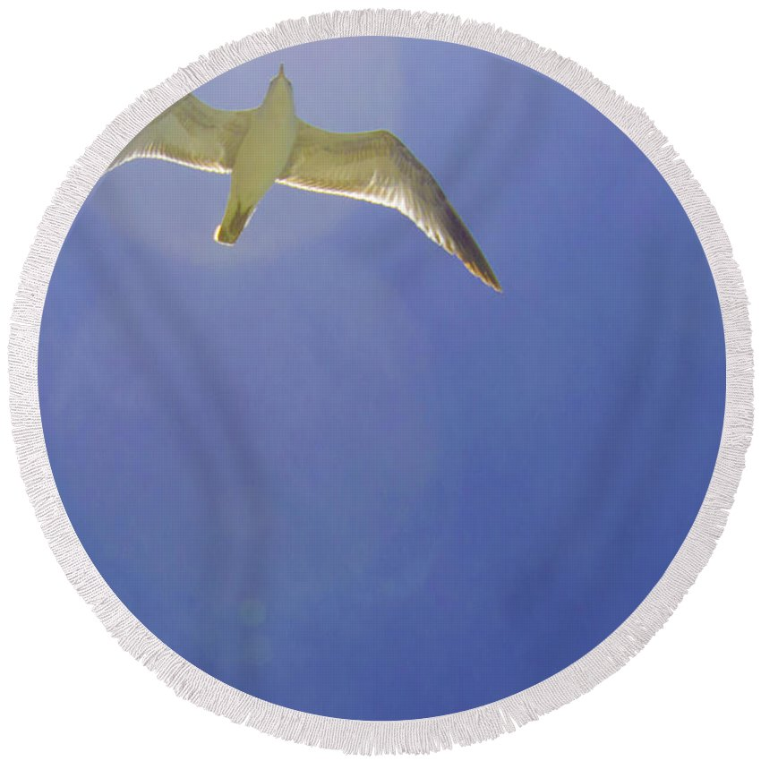 susan Molnar Round Beach Towel featuring the photograph Under His Wings II by Susan Molnar