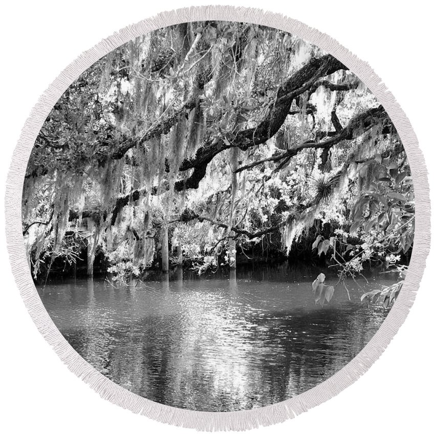 Spanish Moss Round Beach Towel featuring the photograph Under The Canopy by Anita Lewis