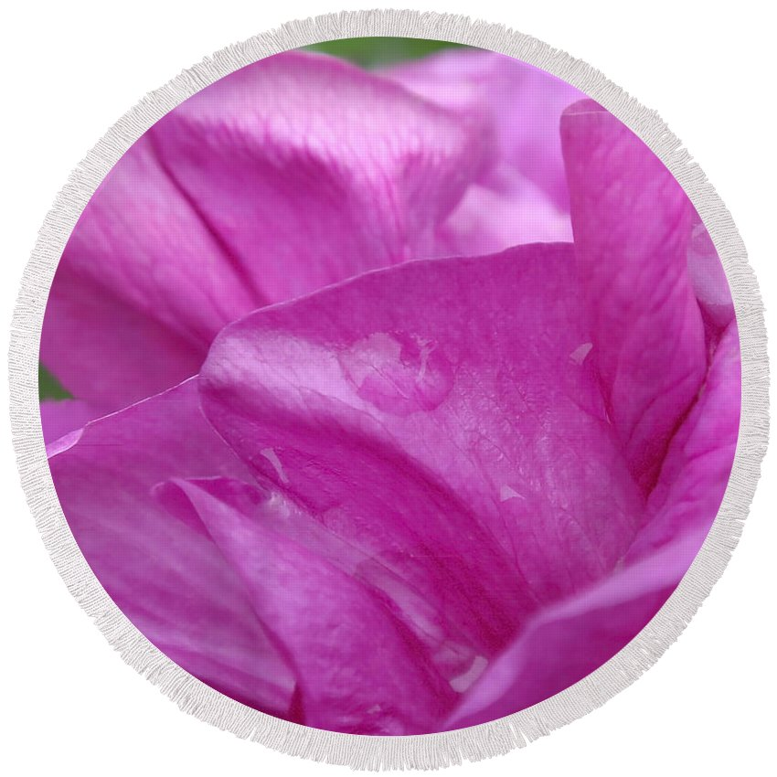 Rose Round Beach Towel featuring the photograph Up Close by Rona Black