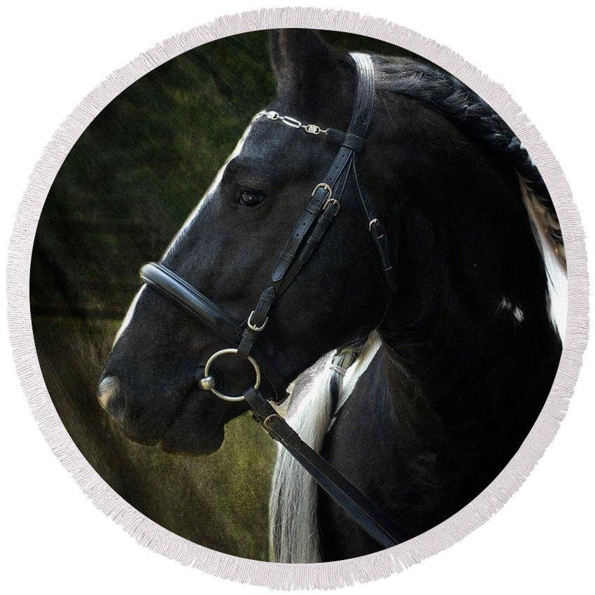 Horses Round Beach Towel featuring the photograph Val Headshot by Fran J Scott