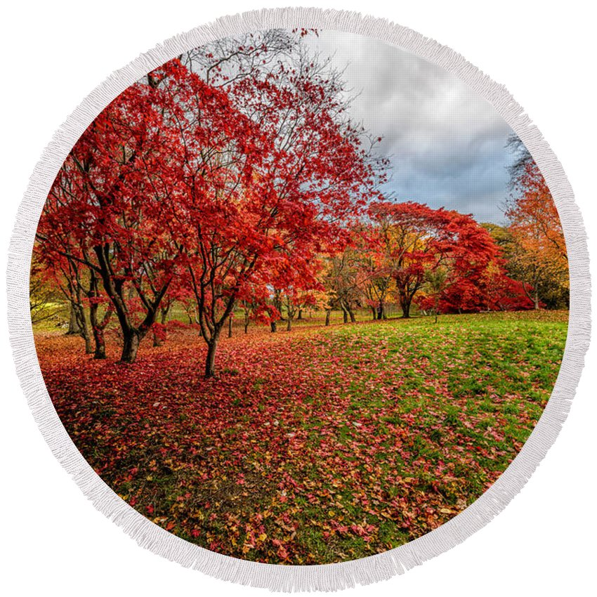Acer Round Beach Towel featuring the photograph View Of Autumn by Adrian Evans