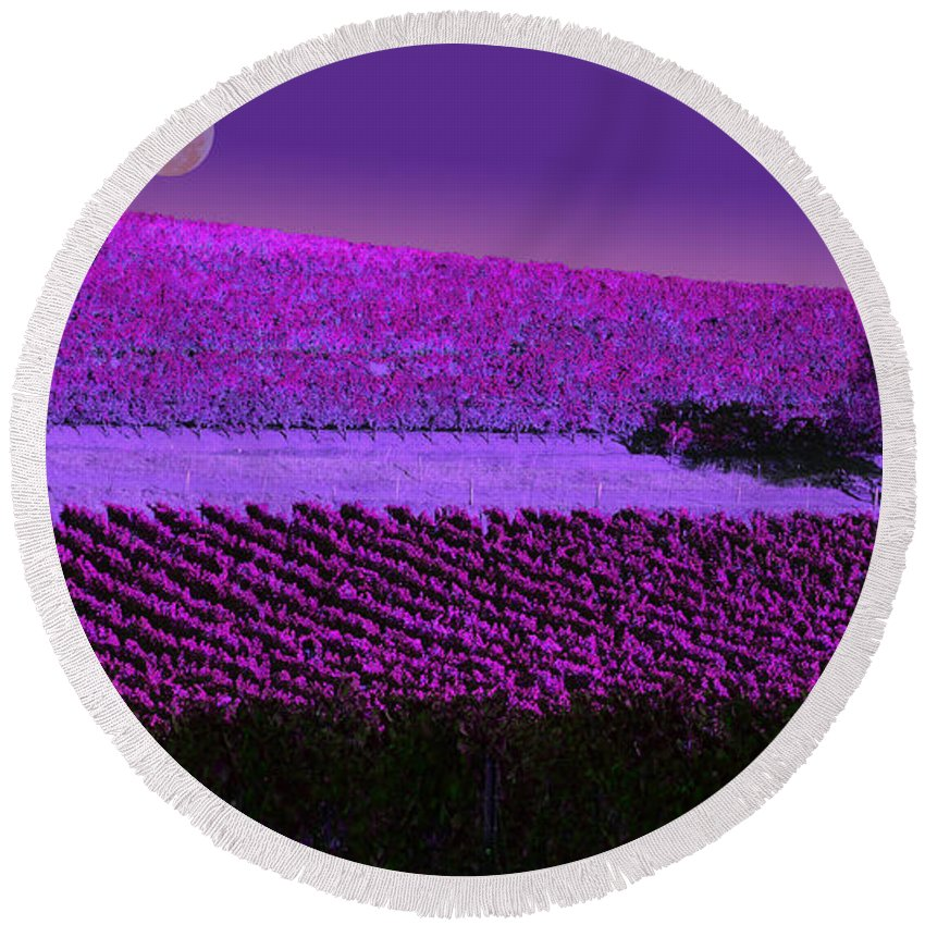 Dust Round Beach Towel featuring the photograph Vineyard 40 by Xueling Zou