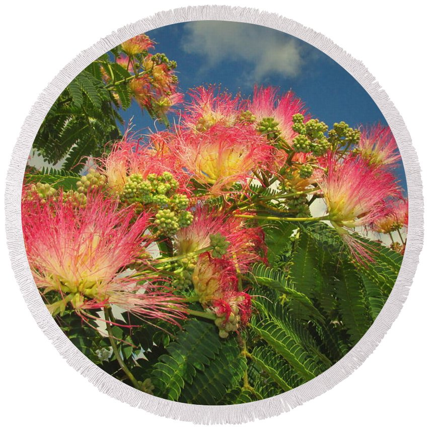 Mimosa Round Beach Towel featuring the photograph Voluntary Mimosa Tree by Joyce Dickens