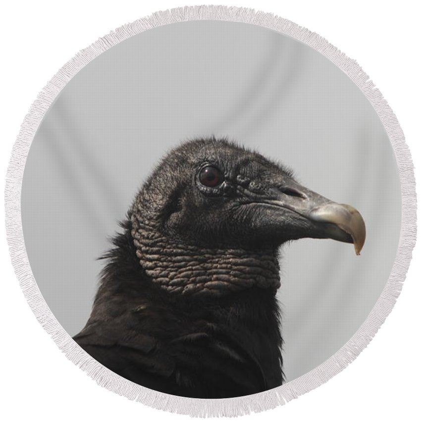 Vulture Round Beach Towel featuring the photograph Wachtful Vulture by Christiane Schulze Art And Photography
