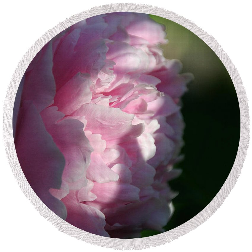 Flower Round Beach Towel featuring the photograph Wake Up Pink Peony by Susan Herber
