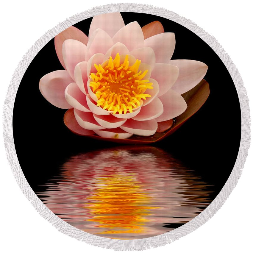 Aquatic Round Beach Towel featuring the photograph Waterlily by TouTouke A Y