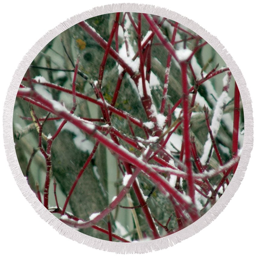 Winter Round Beach Towel featuring the photograph Weed Bush by William Tasker