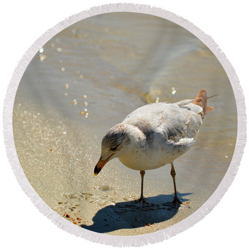 Seagull Round Beach Towel featuring the photograph Wet Toes by Linda Kerkau