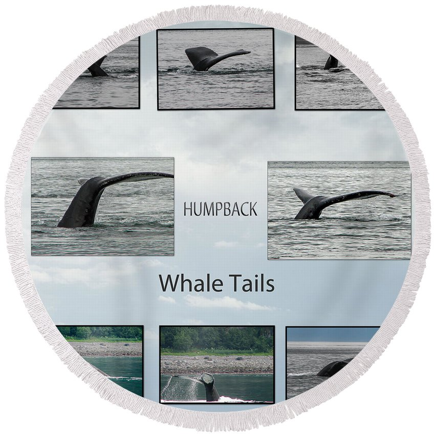 Alaska Round Beach Towel featuring the photograph Whale Tails by Robert Bales
