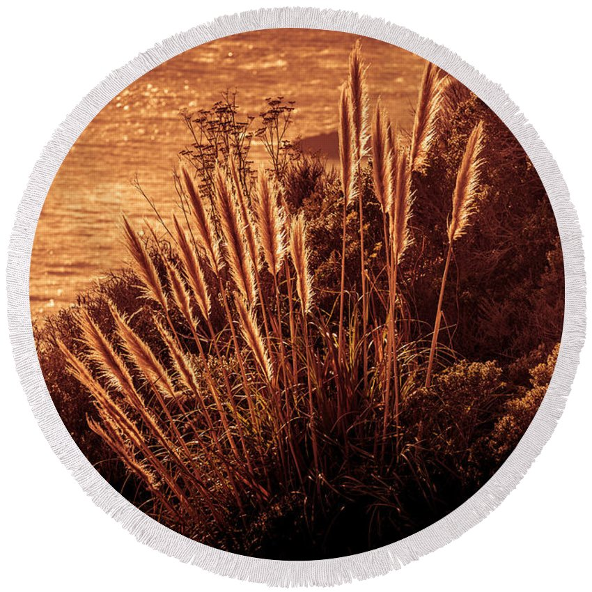 Copyrighted Round Beach Towel featuring the photograph Wheat Grass by Mike Penney
