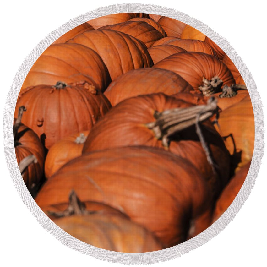 Landscape Round Beach Towel featuring the photograph Which One Is The Great Pumpkin by Elvis Vaughn