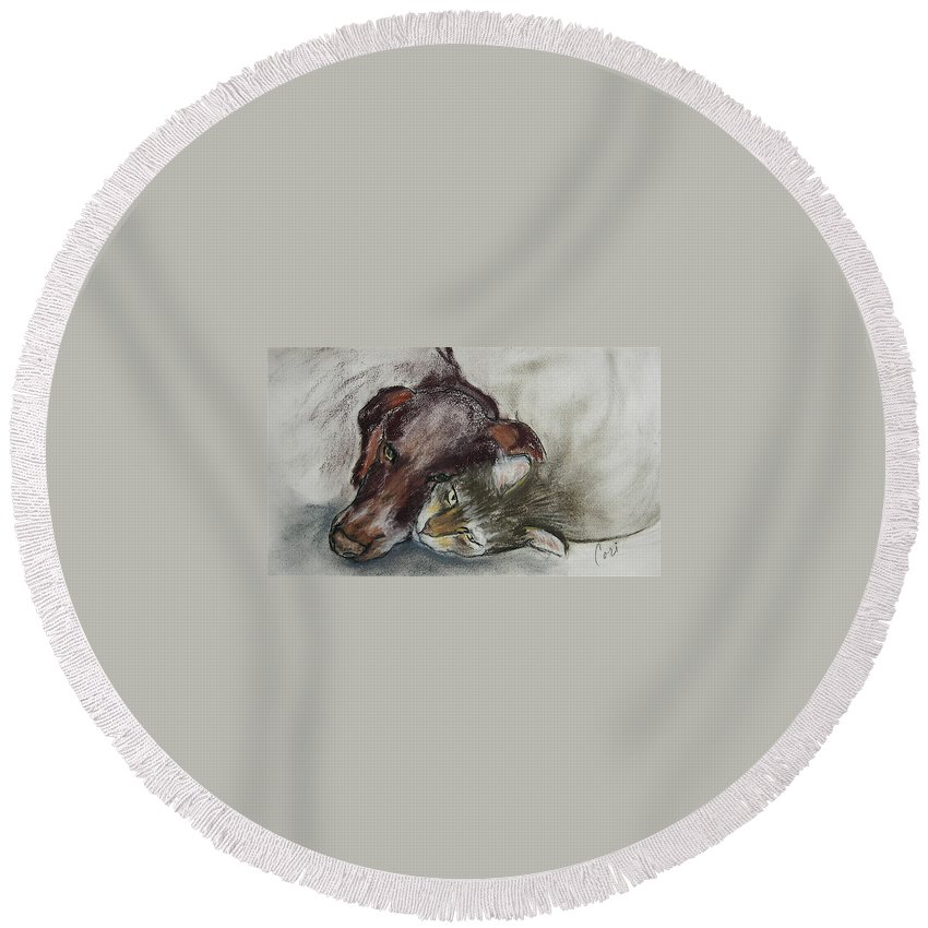 Dog Round Beach Towel featuring the drawing Whisker To Whisker by Cori Solomon