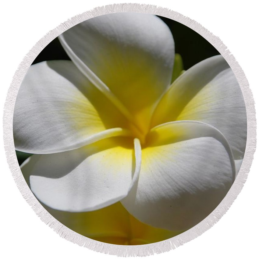 Nature Round Beach Towel featuring the photograph White Bloom by Rob Hans