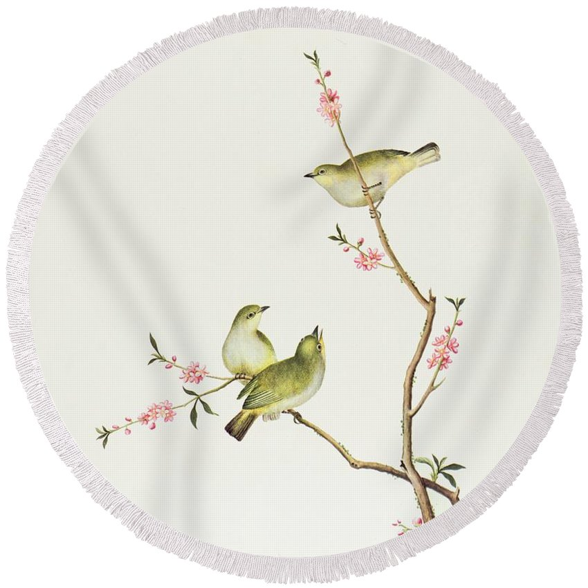 Ornithological Round Beach Towel featuring the painting White Eye Bird by Chinese School