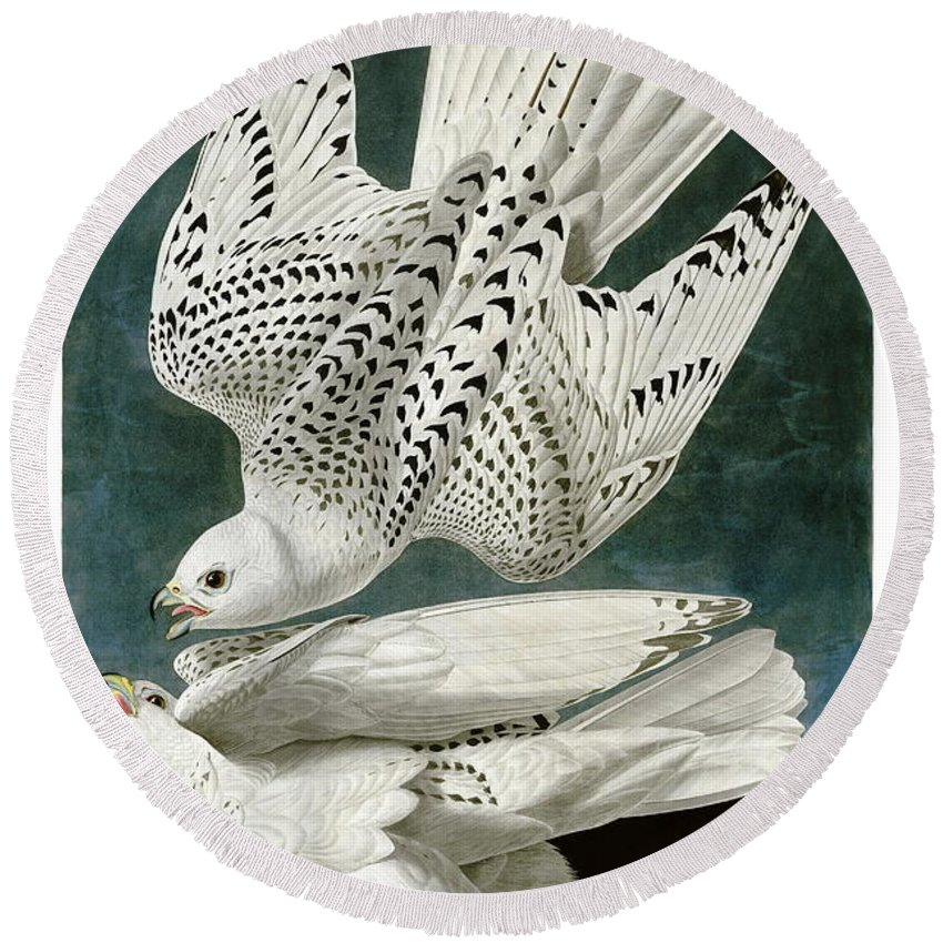 Louisiana Heron Round Beach Towel featuring the drawing White Falcon by Celestial Images
