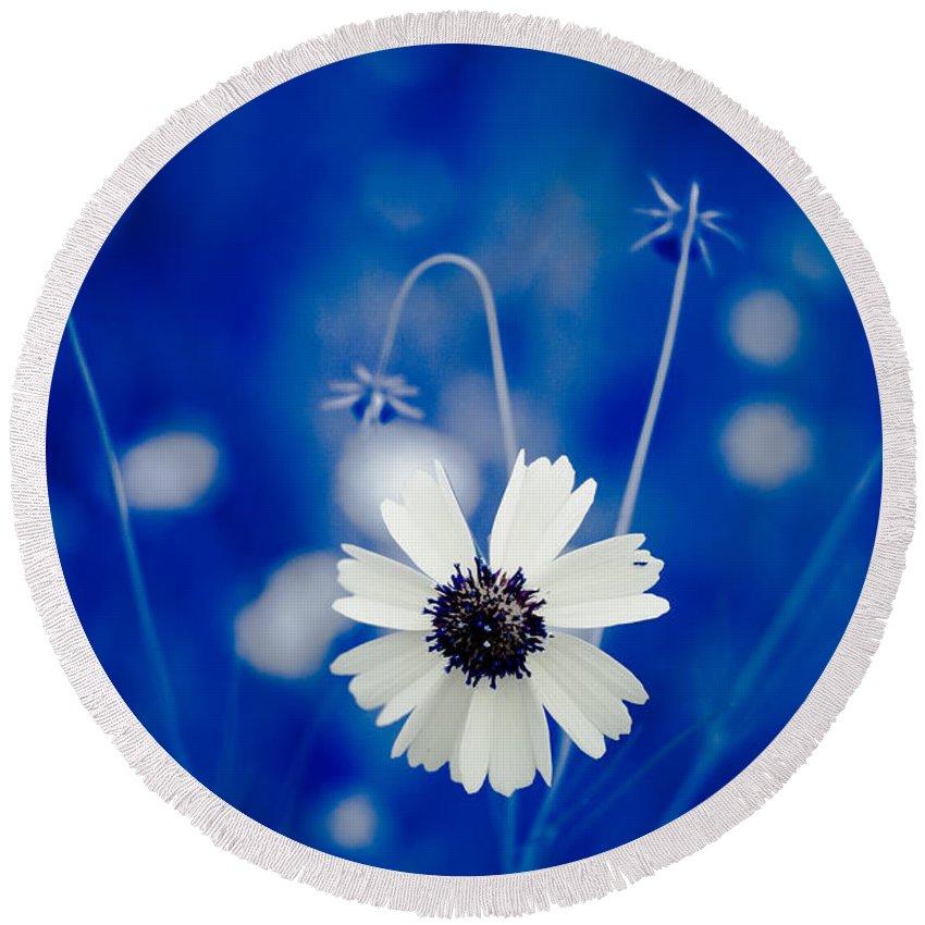 Art Round Beach Towel featuring the photograph White Flower by Darryl Dalton