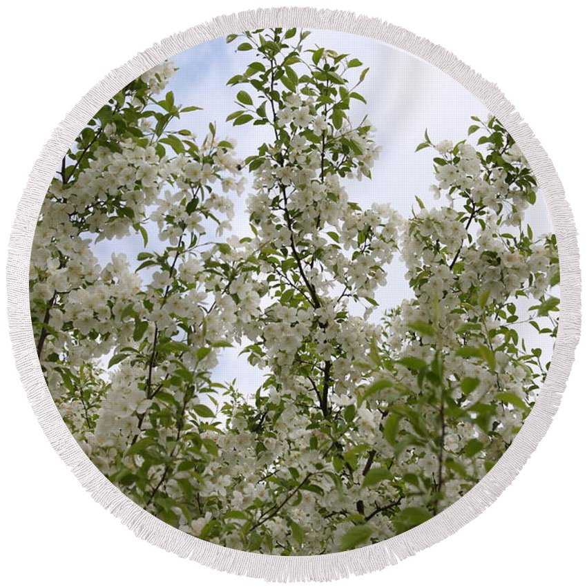 Flower Round Beach Towel featuring the photograph White Flowers On Branches by Michelle Miron-Rebbe