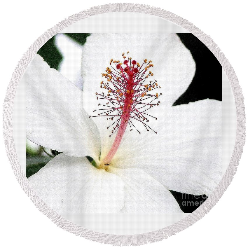 White Hibiscus Flower Round Beach Towel featuring the photograph White Hibiscus by Mary Deal