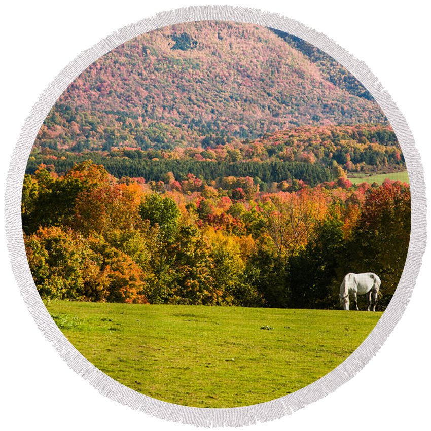 autumn Foliage New England Round Beach Towel featuring the photograph White Horses Grazing With View Of Green Mtns by Jeff Folger