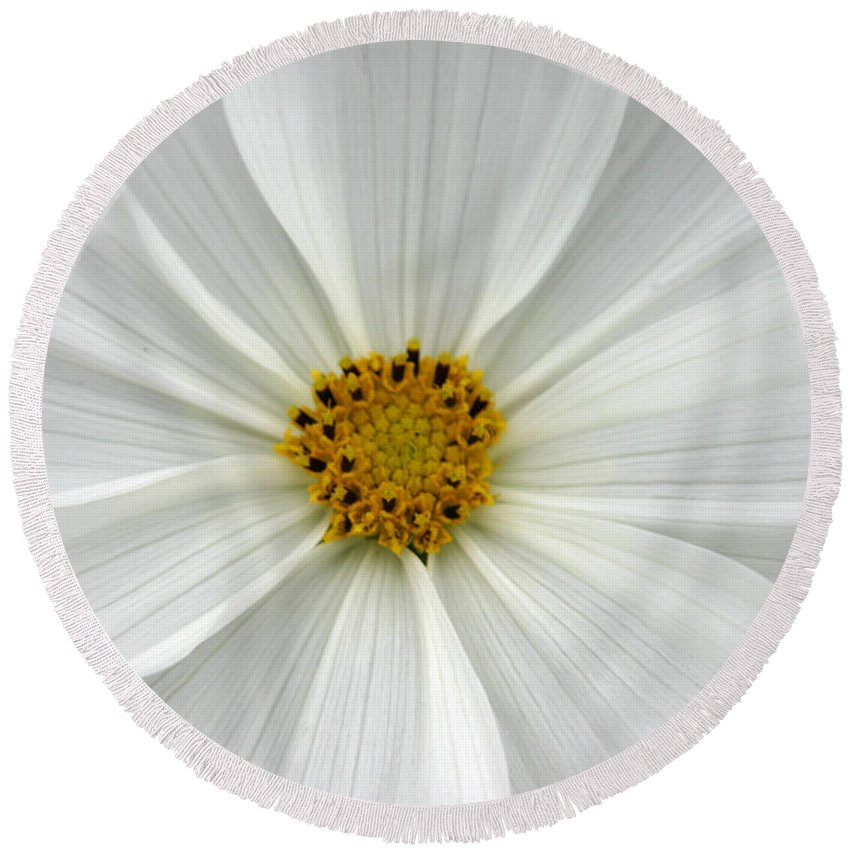 White Light Round Beach Towel featuring the photograph White Light by Denyse Duhaime