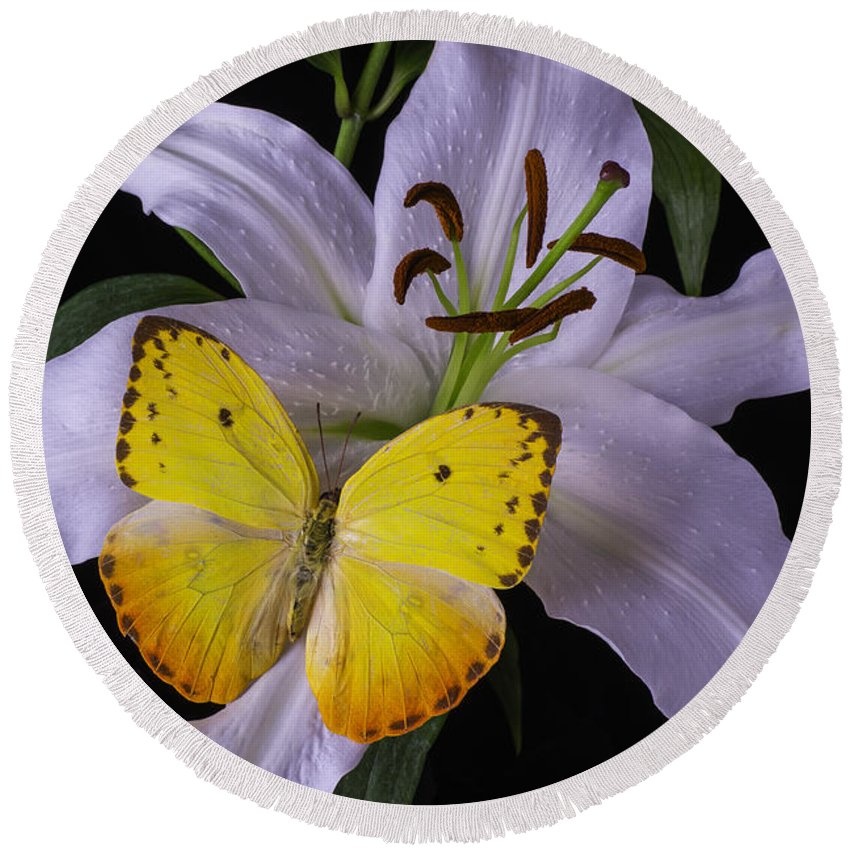 White Tiger Lily Round Beach Towel featuring the photograph White Lily With Yellow Butterfly by Garry Gay