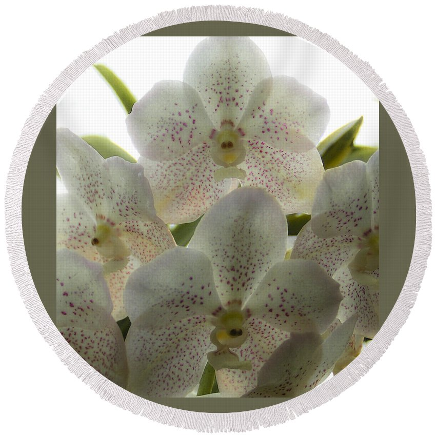 Lovejoy Round Beach Towel featuring the photograph White Orchids by Lovejoy Creations