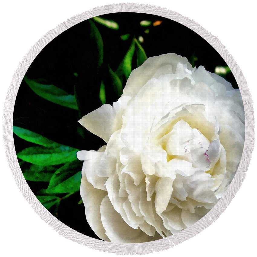 Peony Round Beach Towel featuring the photograph White Peony by Michelle Calkins