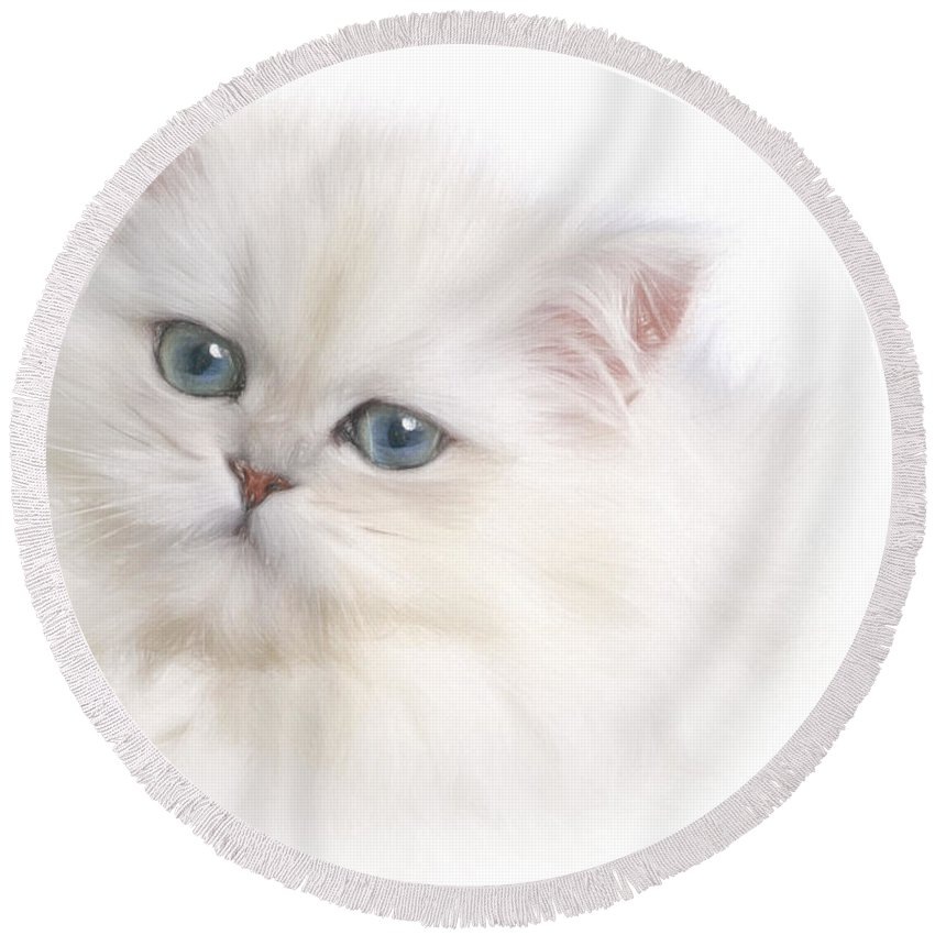 Animals Round Beach Towel featuring the photograph White Persian Kitten by David and Carol Kelly
