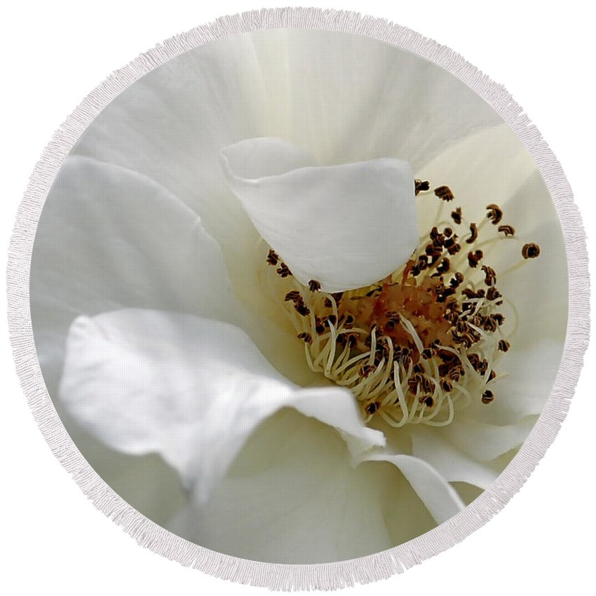 Flower Round Beach Towel featuring the photograph White Petals by Michelle Joseph-Long