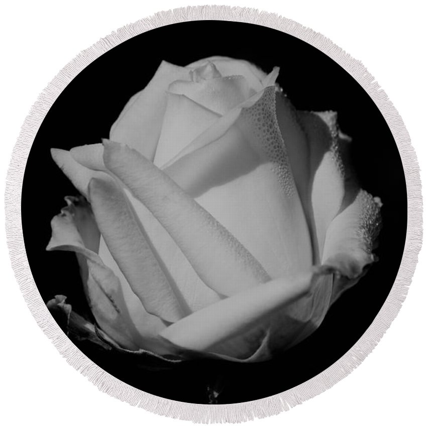 White Rose Round Beach Towel featuring the photograph White Rose by Michelle Joseph-Long