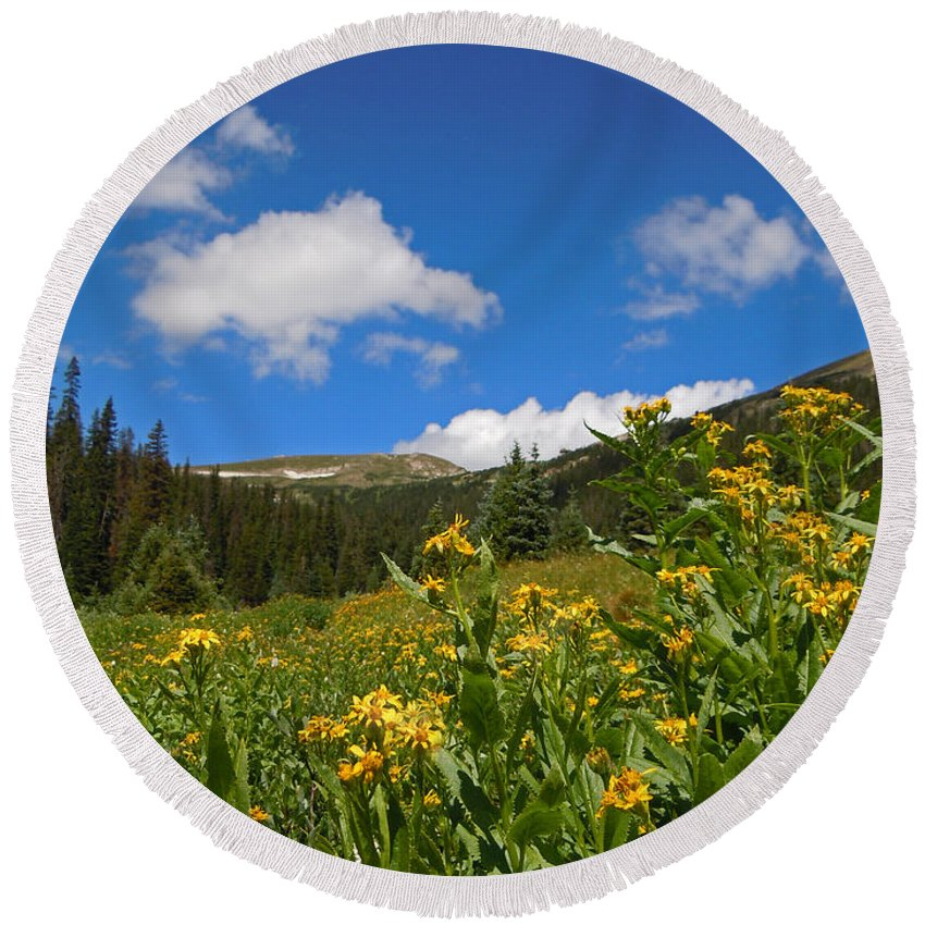 Rocky Mountain Plein Air Round Beach Towel featuring the photograph Wild Flowers In Rocky Mountain National Park by Heather Coen