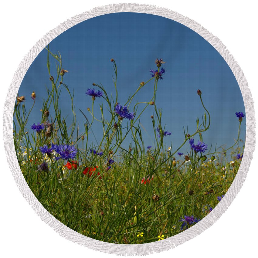 Sky Round Beach Towel featuring the photograph Wild Flowers by TouTouke A Y